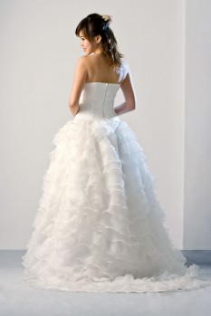 Wedding Dress silk organza ruffle ball gown back